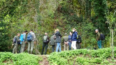 Monitoring visit in Carne and Monte Mauro